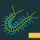 centipede insect outline vector
