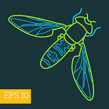 fly insect  outline vector