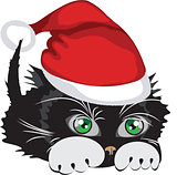 Kitten wearing a Santa Claus hat
