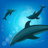 Dolphins underwater - sea animals.