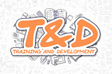 Tandd - Doodle Orange Word. Business Concept.