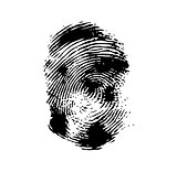 Fingerprint on a white background.