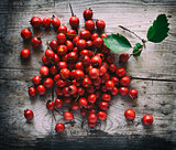 Hawthorn berries on a wooden background