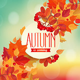 Autumn is coming - background.