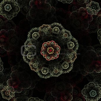 Abstract flower fractal