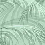 Palm Leaf Jungle Background