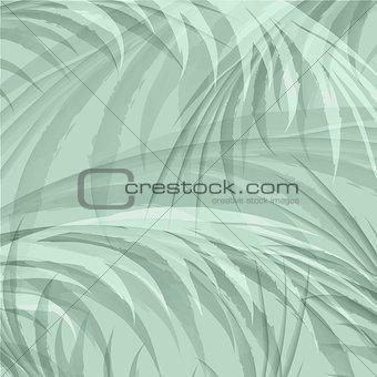 Palm Leaf Jungle Background