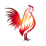 Red Rooster Illustration