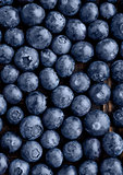 Blueberries on grunge wooden kitchen board close up