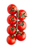 Fresh organic tomatoes isolated on white background