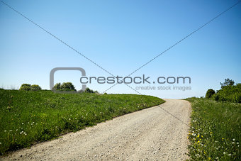country road at summer
