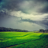 Landscape with Green Field and Gray Dramatic Sky