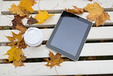 tablet pc and coffee cup on bench in autumn park