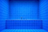 blue bathroom side view to the tub