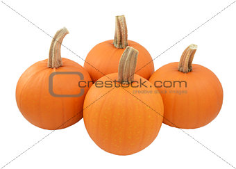 Four ripe orange pumpkins