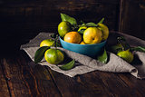 Still Life with Tangerines in Blue Bowl.