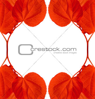 Frame of red autumn leaves