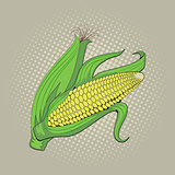 Ear of corn, pop art retro vector illustration