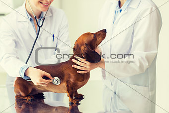 close up of vet with stethoscope and dog at clinic