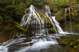 Panther Creek in Gifford Pinchot National Forest