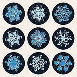 Set of Nine Vector Line Art Stroke Offset Geometric Blue Snowflake Shape Design Elements