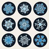 Set of Nine Vector Line Art Stroke Offset Geometric Blue Snowflake Shape Design Elements