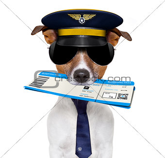 airline pilot flight attendant check in  ticket