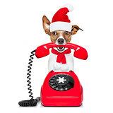 dog on the phone christmas santa hat