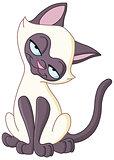 Charming cat