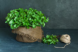 Brown pot, sheaf of mint and skein of twine
