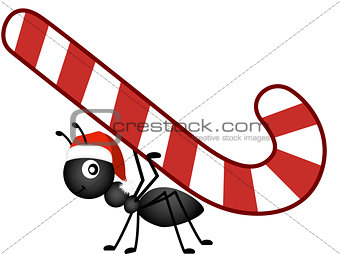 Ant carrying a Christmas candy cane