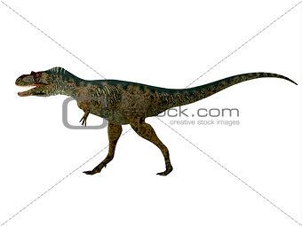 Albertosaurus Dinosaur Side Profile