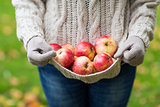 close up of woman with apples in autumn