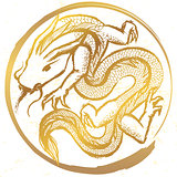 Ink hand drawn stylized chinese dragon round emblem
