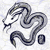 Ink hand drawn dragon snake illustration