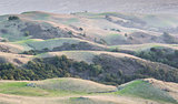California Rolling Hills and Silicon Valley Background