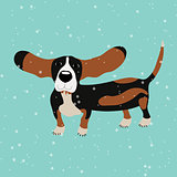 Dog Basset Hound under falling snow on the blue background