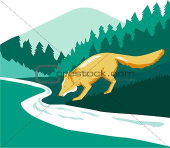 Fox Drinking River Creek Woods Square Retro