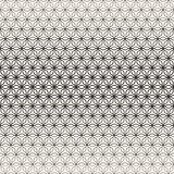 Vector Seamless Lines Petal Shapes Lattice Pattern