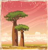 Madagascar baobabs and sunset sky.