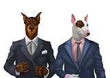illustration of doberman and bullterrier dressed up in office suit