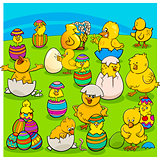easter chicks group cartoon