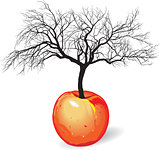 Vector - apple tree from fruit