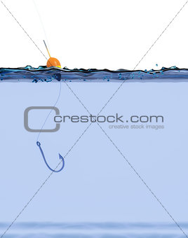 fish hook on the water