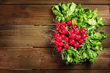 Fresh radish bunch on rustic wooden background
