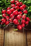 Fresh radish roots on wooden background