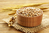 Natural organic wheat. Grain in a wooden bowl