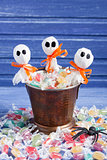 Halloween candy bucket, lollipop ghosts and rubber spider