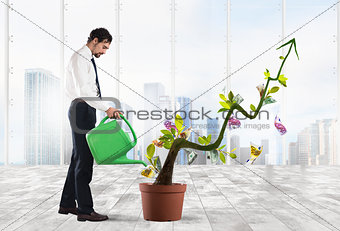 Growing the economy