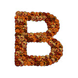 abstract vector font, made of ethnic elements - letter b